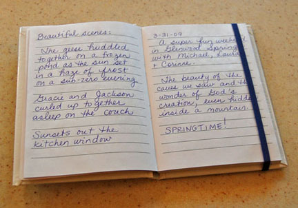 Examples of gratitude journal entries