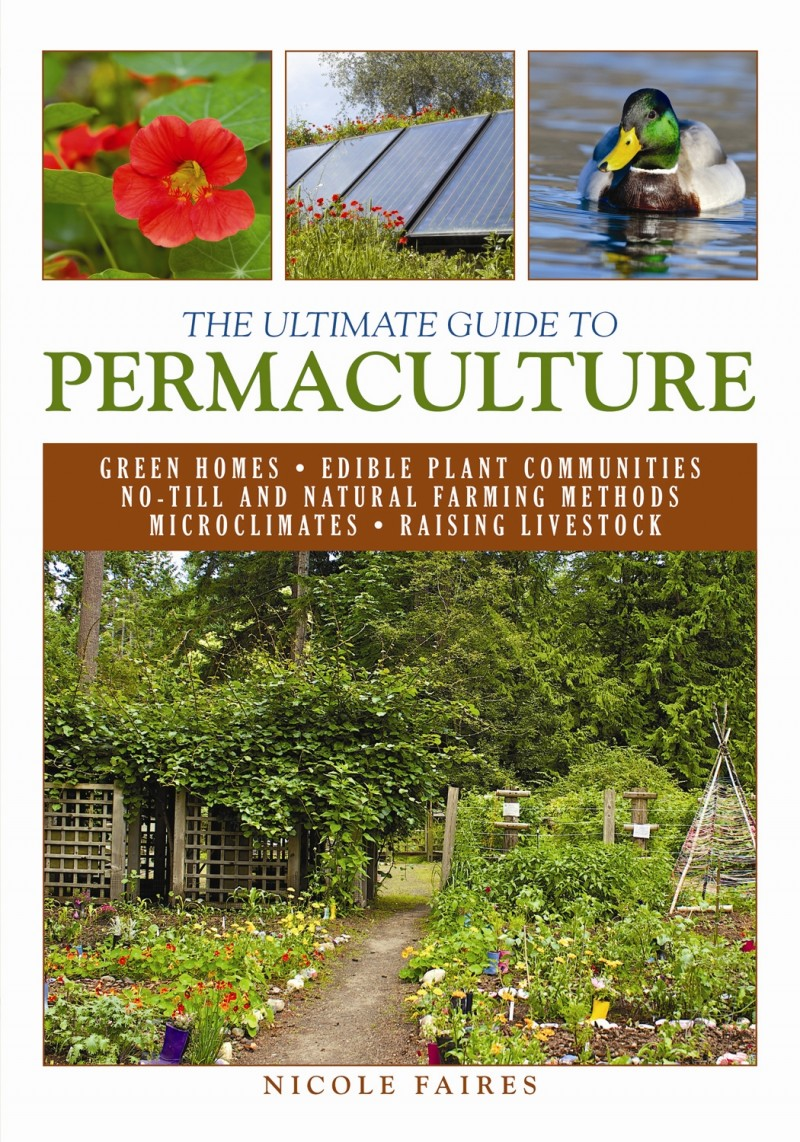 about permaculture after reading a very interesting book Permaculture