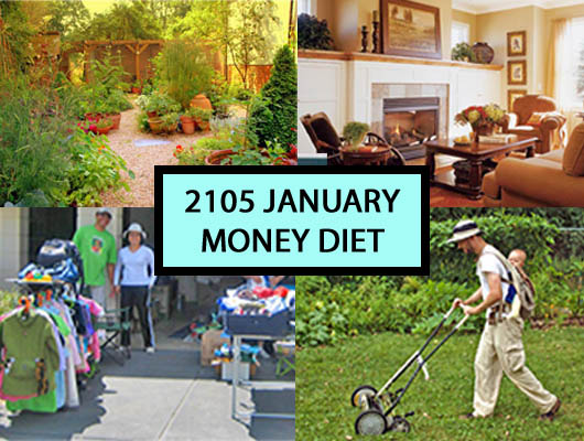 2015 January Money Diet comes to an end
