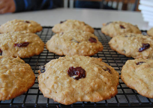 Quinoa oatmeal cookies with dried cherries