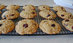 oatmeal cookies with quinoa