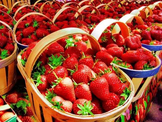 Strawberries signal springtime