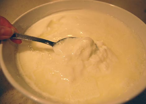 Fresh homemade yogurt | Happy Simple Living