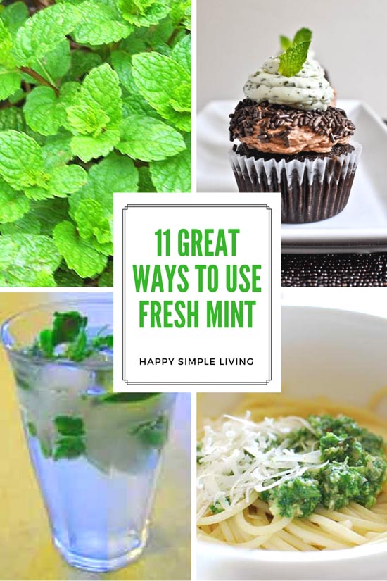 things to do with fresh mint