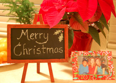 Merry Christmas from Happy Simple Living
