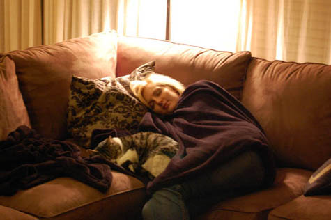 Catnap at Happy Simple Living