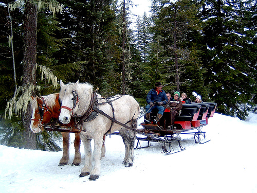 Christmas sleigh ride at Happy Simple Living blog