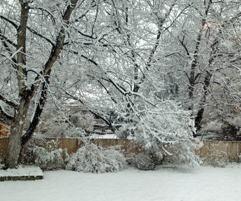Spring snow at Happy Simple Living blog
