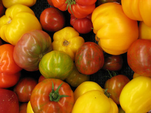 heirloom tomatoes on Happy Simple Living blog