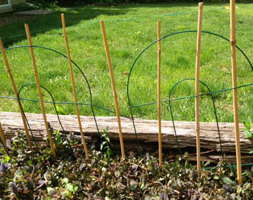 Deterring rabbits at Happy Simple Living blog