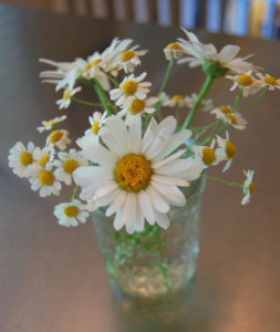 Jelly Jar Daisies at Happy Simple Living blog
