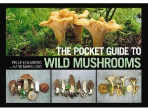Pocket guide to mushrooms at Happy Simple Living