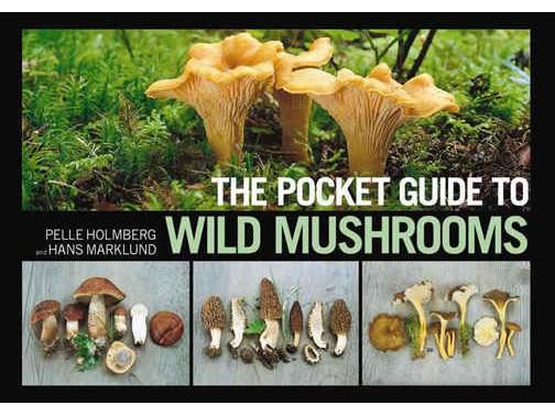 Free book giveaway the pocket guide to wild mushrooms happy simple living - Wild mushrooms business ideas ...