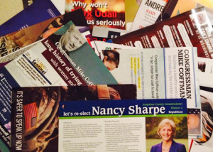 Political flyers from one election season