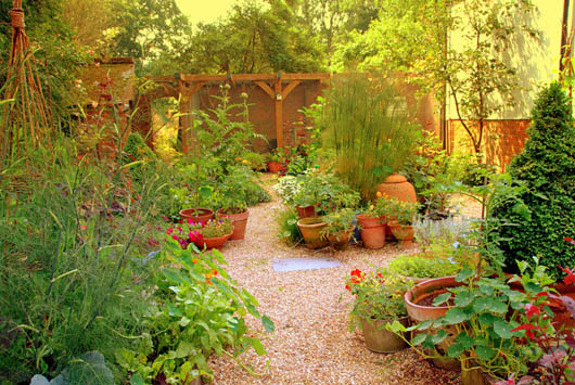 Plan Your Garden During The January Money Diet