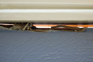A drafty gap in the window frame