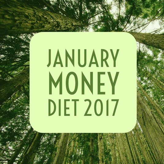 2017 January Money Diet | Happy Simple Living blog