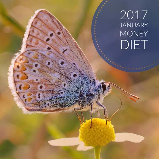 Join the 2017 January Money Diet