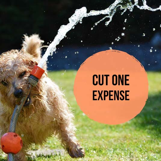 Cut expenses and save