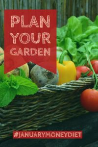 Plan your garden | January Money Diet