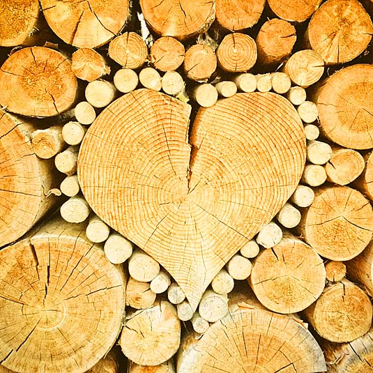Logs in heart shape