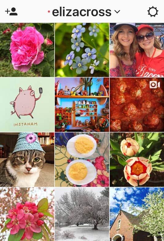 Instagram Eliza Cross