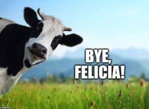 bye felicia cow