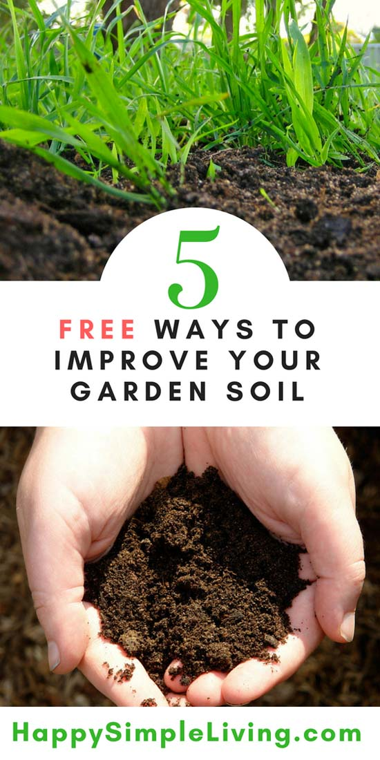 5 Free Ways to Improve Your Garden Soil   Happy Simple Living