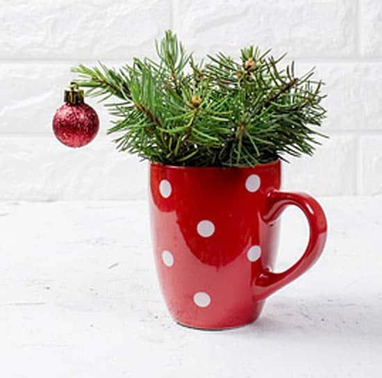 Simplify the holidays | #alldonebydecemberone #simplechristmas #simpleholidays